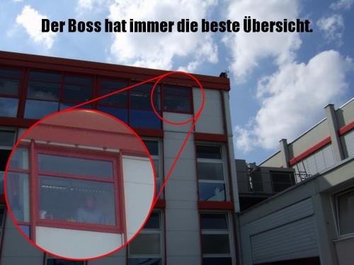 DerBoss